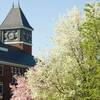 Rounds Tower and spring blossoms.