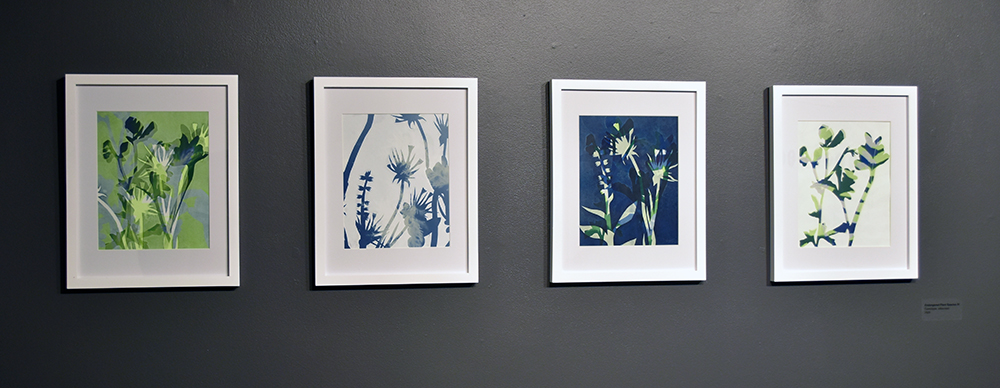 Kimberly Ritchie, Endangered Plant Species IV. Cyanotype, silkscreen. 2020.