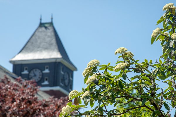 Spring 2020 President's and Dean's Lists Named