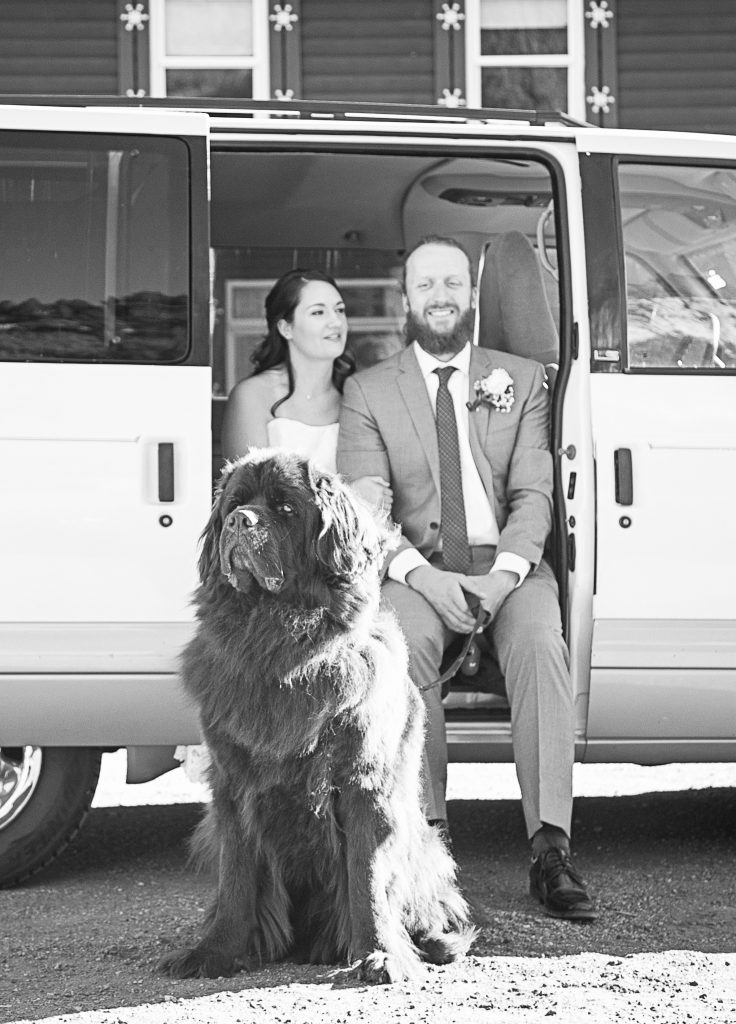 Scott Wood '11 and Emilia (Comai) Wood '11 pictured with their Newfoundland, Odin, enjoying their big day